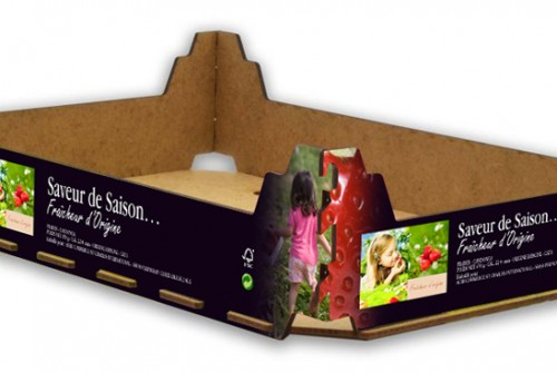Packaging fraise – Grande Distribution